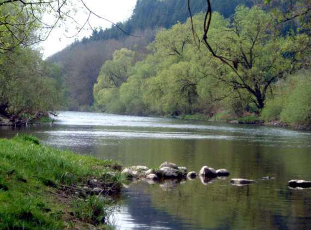 Gewässerordnung / Regeln rund um das Angeln